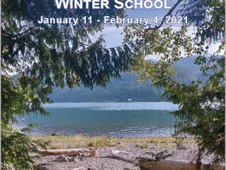 Virtual Winter School 2021