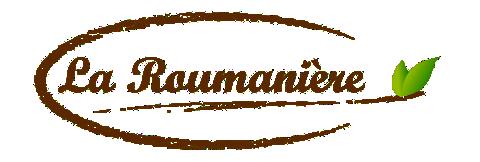 Confitures La Roumanière, La suite du Off, Chambre d'hôtes