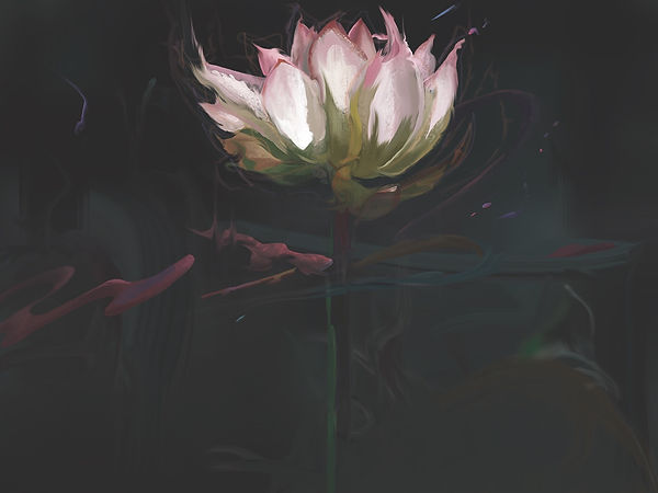 Lotus by Qiké Quintero