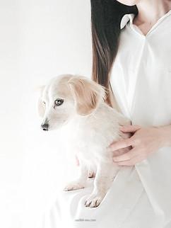 愛犬ちゃん🐶
