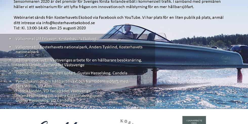 Webinar - Hållbar tillväxt och framtidens sjöfart