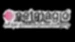 Netmagic_edited.png