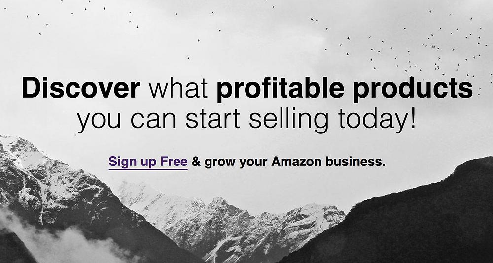 Grow Your Amazon Business