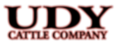 UDY_Logo.png