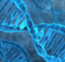 DNA, Regenerative Medicine