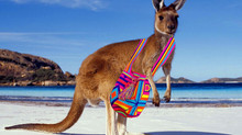 Wayuu Bags coming to Australia!