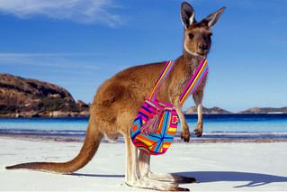 Wayuu Bags coming to Australia!