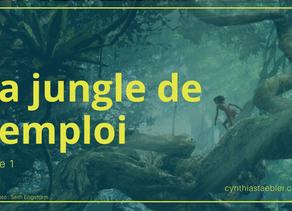 La jungle de l'emploi... (partie 1)