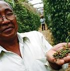 Secret Garden to Kampot and Kep
