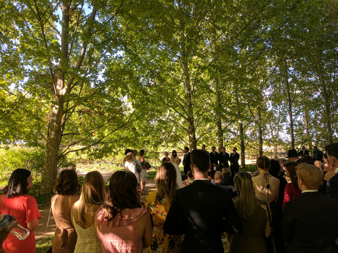 Hannah & Aiden | Ampelon Gardens, Mildura