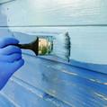 Organic Paint Malerstrasse