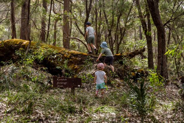 Karridale Cottages new Nature Scavenger Hunt