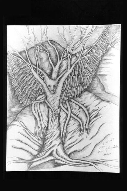 drawings 65