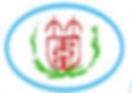 zhuwei logo.png