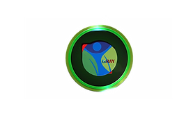 tvRAY Official Logo.png