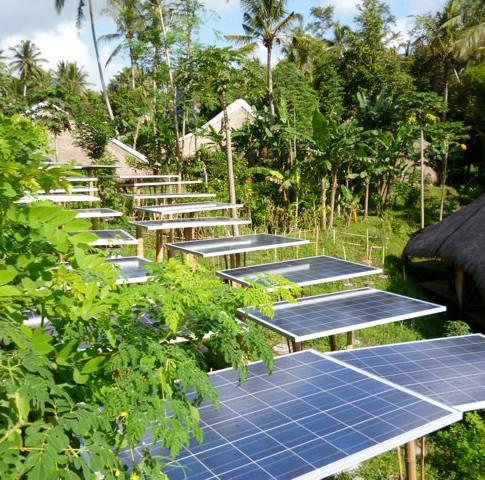 GreenSchool de Bali