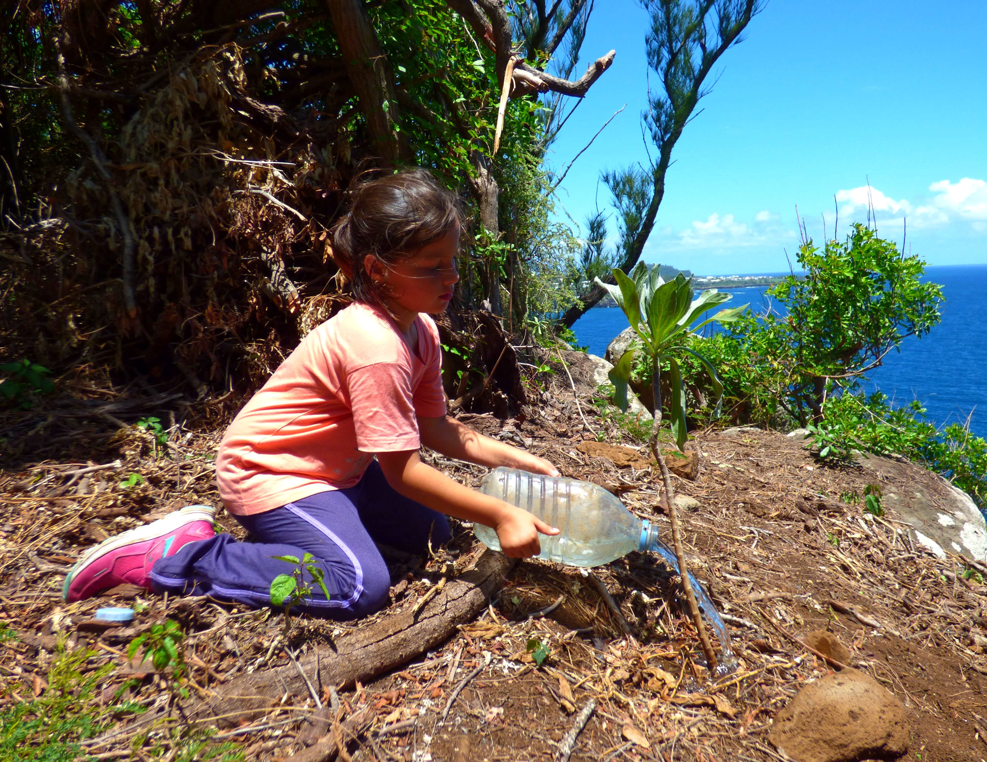 Copie de Entretien des plantes indigenes par une benevole de la SEOR