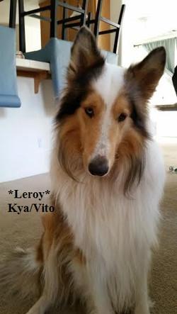 leroy10