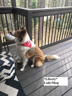 liberty10