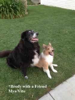 Kenya and Brody