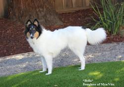Bella 6 months