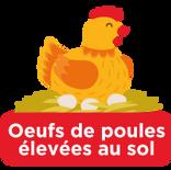 oeufs de poules élevées au sol