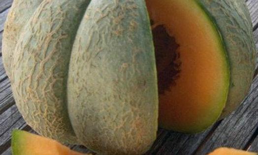 Melon Oka