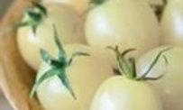 Tomate Cerise Groseille Blanche