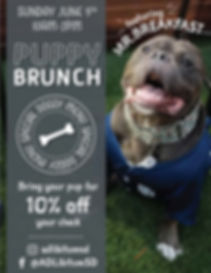doggie brunch.jpg