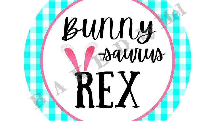 Bunny-SAURUS-Rex SINGLE 3x3