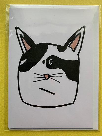Cat Card -Fidget