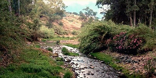 Río Grande 56.jpg
