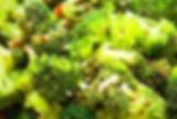 brocoli coco_edited.jpg