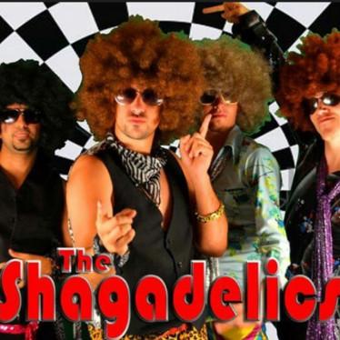 THE SHAGADELICS - DISCO TRIBUTE