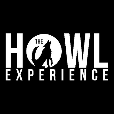THE HOWL EXPERIENCE DUELING PIANOS
