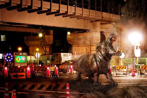 「wild city life~カバ~」 オリジナルプリント インクジェット ed:03