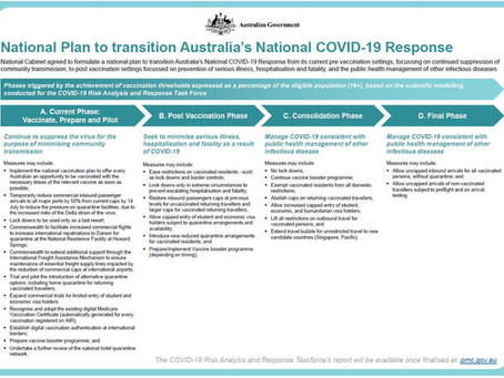 COVID-19: GOVERNO ANUNCIA PLANO OFICIAL PARA REABERTURA DAS FRONTEIRAS