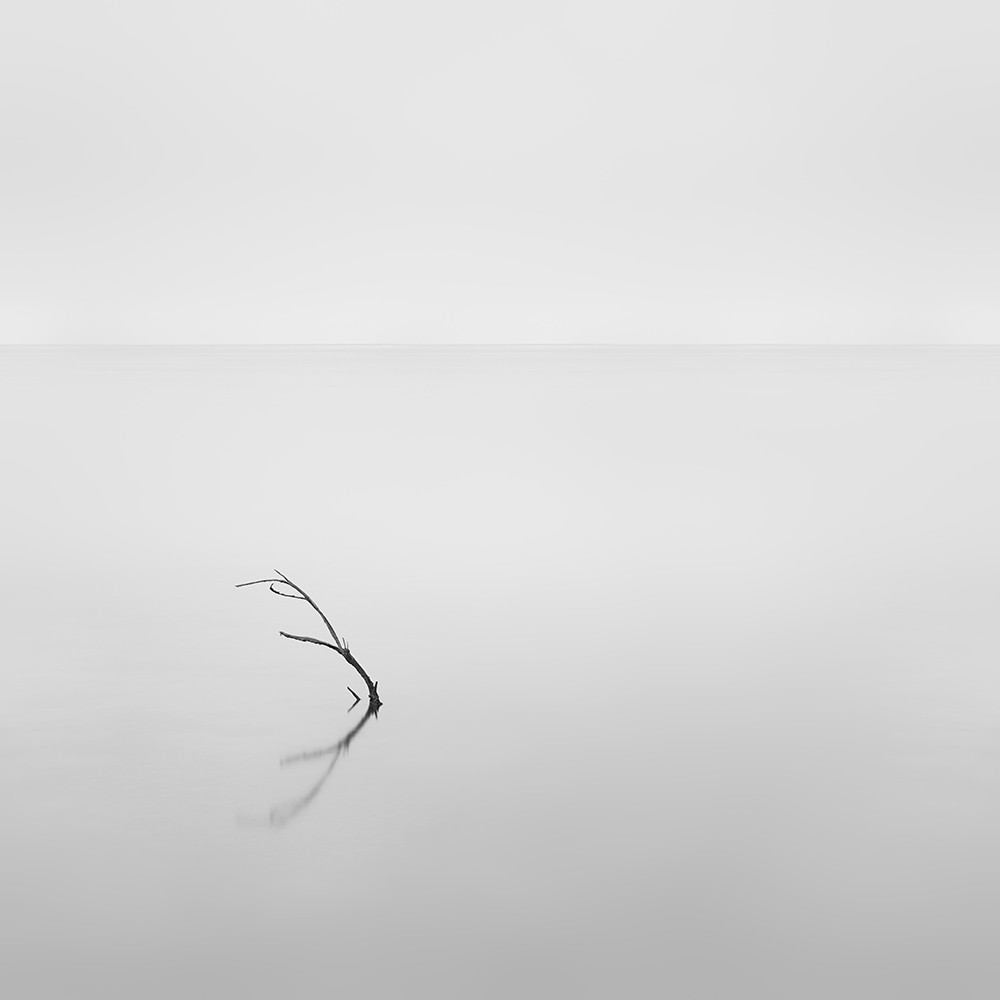 the shape of a sunken branch and its reflection, used as a subject in a fine art image