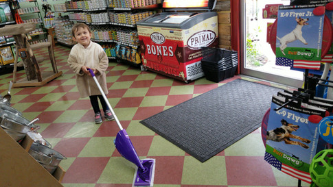 Cleaning floor at Friends Forever Pet Food Store in Kirkland wa