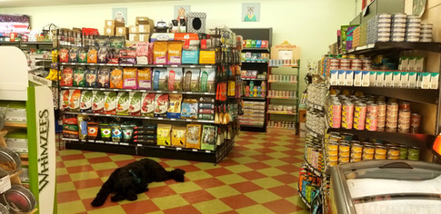 Maja is selling cat food at Friends Forever Pet Food Store in Kirkland WA
