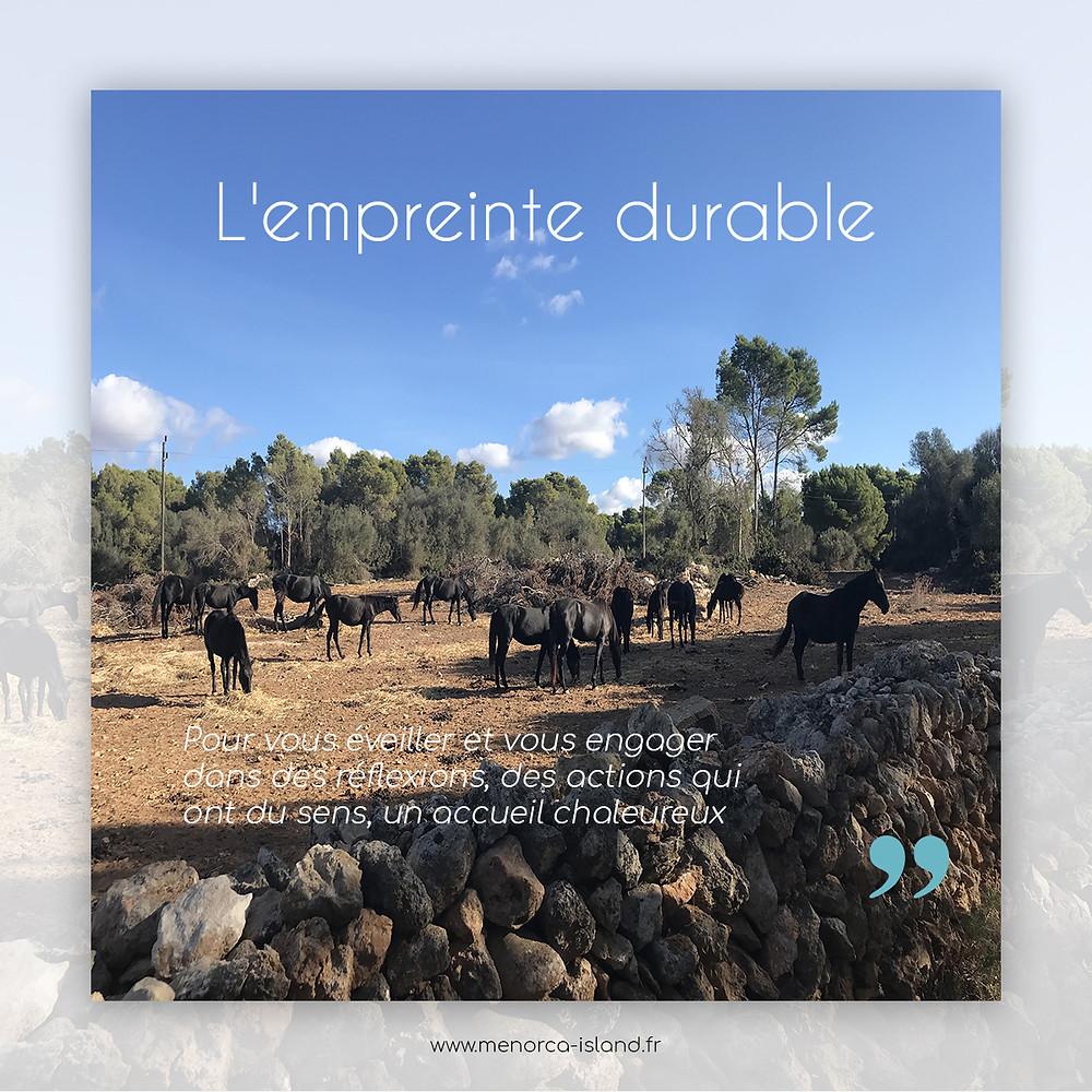 Menorca Island by Lodge Attitude   agence DMC à Minorque   Evénements et Voyages   Voyage développement durable