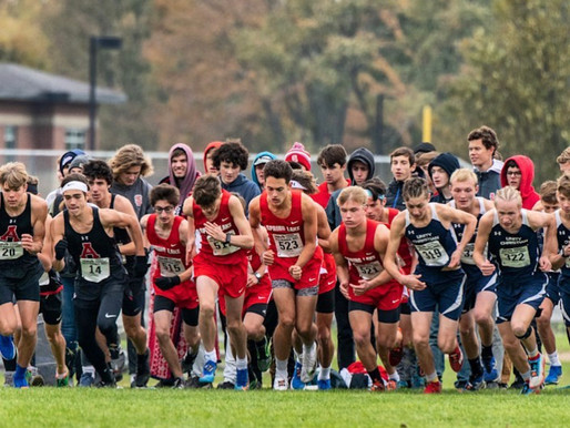 A Strong End to Laker Cross Country