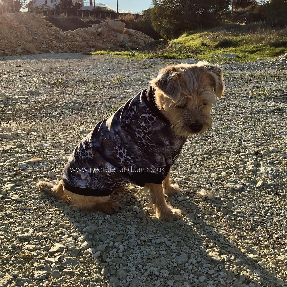 Hoodie Dog Sweater by Ellie and Mac