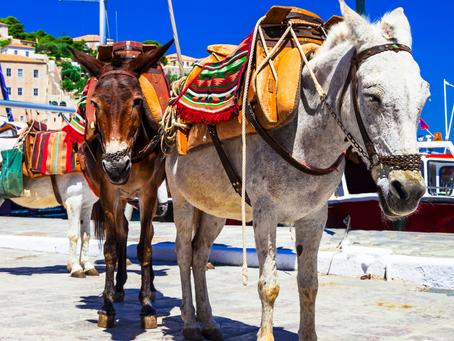 De 6 leukste activiteiten op de Peloponnesos