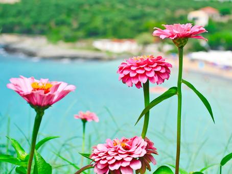 De beste reistijd voor de Peloponnesos