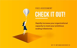 Free Assessment Report on Your Organizational Capacity to Meet Your Ambitious Scaling Milestones