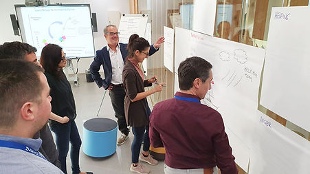 Business Innovation Coaching