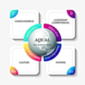 AQUAL model - Team Leadership Coaching