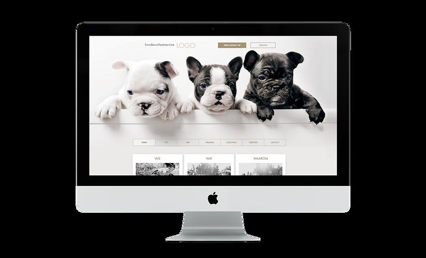 Bloomcool-websites-uitlaatservice-LUPA