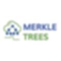merkle-trees-sq.png